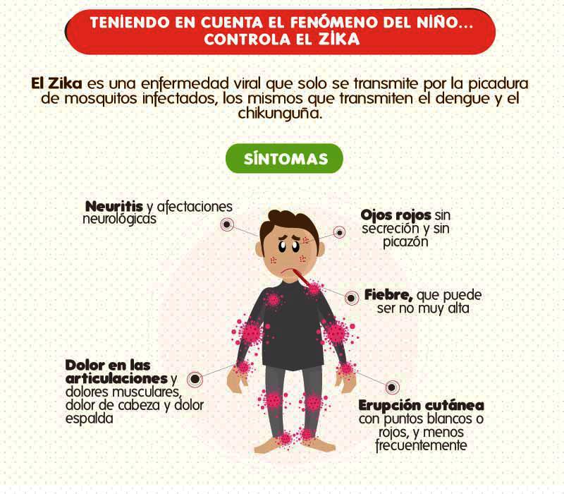 infografia-zika-pequena-oct-2015 (1)